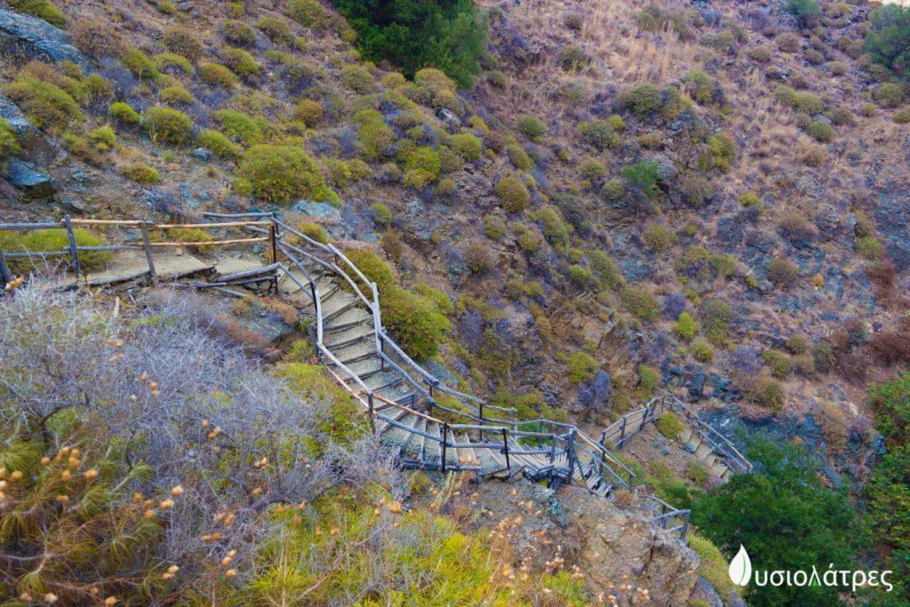 Ξύλινη σκάλα στο φαράγγι του ρίχτη